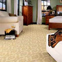Carpet & Upholstery Protective Guards