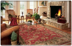 Easy to Clean Area Rugs